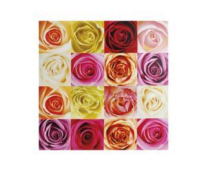 Stampa su tela con telaio in legno Rose - 60X60 cm