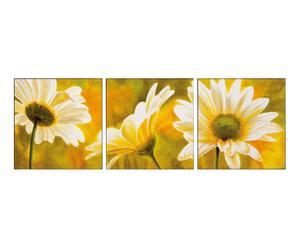 Trittico di stampe su pannello in legno White Daisies - 150x50 cm