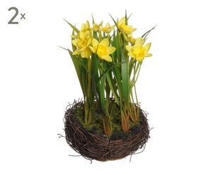 set di 2 mazzi di narcisi gialli in nido - d 12/h 35 cm