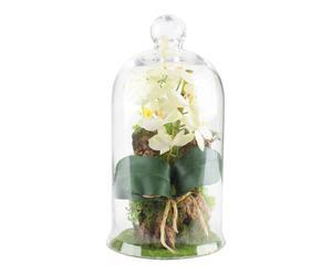Pianta artificiale con campana in vetro Garden I - d 18/h 34 cm