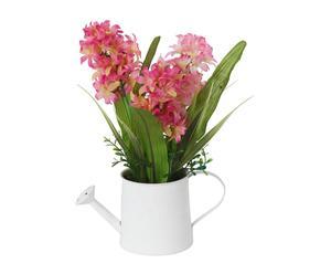 mazzo di giacinti in vaso - 27x27x28 cm