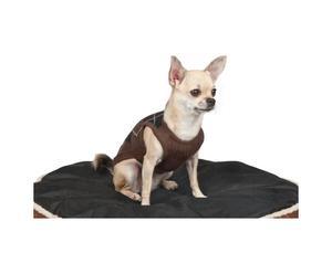 Cappottino in puro cashmere per cani ARTHUR - Marrone