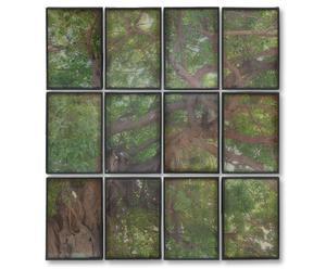 Wanddecoratieset Nyctea, 12-delig