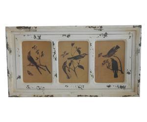 Fotolijstje BIRDY, 75 x 40 cm