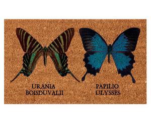 Deurmat Butterfly, 45 x 75 cm
