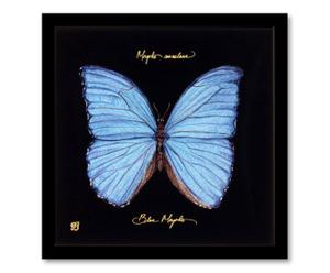 Ingelijste, digitale print Butterfly, blauw/zwart, 30 x 30 cm