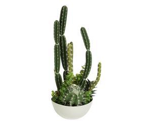 Decoratieve cactus in sierpot Jacinta, multicolour, H 69 cm