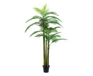 Decoratieve palmboom in sierpot Jorge, groen/zwart, H 220 cm
