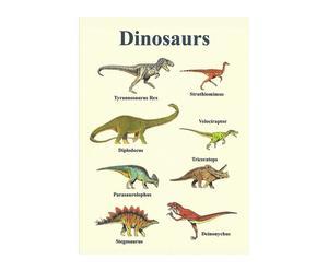 Canvas afdruk Dino, 70 x 50 cm