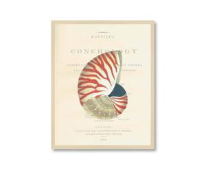 Ingelijste digitale print QUIMPER II, 55 x 43 cm