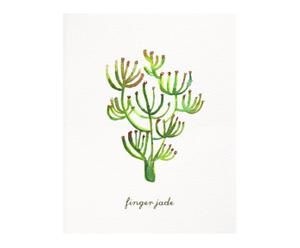 Affiche Finger jade Herbs & Plants, Vert et marron - 20*25