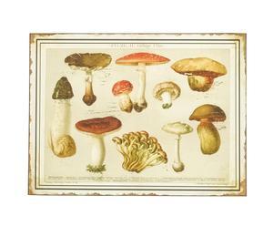Plaque décorative champignons métal, multicolore - 50*37