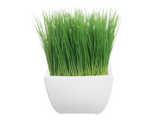 Kunstplant Air, groen/wit, H 23 cm