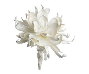 Decoratieve bloem Cumbi, wit, H 99 cm