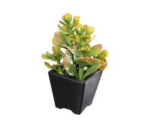Cactus decorativo in vaso di ceramica - 14x23x14 cm