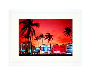 Ingelijste foto Miami palms, 30 x 40 cm