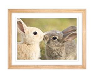 Print in vitrinelijst Bunnies, multicolor, 42 X 32 cm