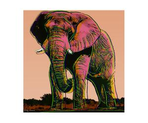 Canvas print Olifant III, multicolor, 40 x 40 cm