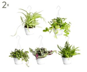 Set van 10 hangplanten Firia, H 30 cm