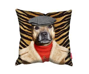 Kussen Dogboy, multicolor, 45 x 45 cm