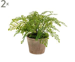 Set van 2 kunstplanten Adiantum, groen/bruin, diameter 32 cm