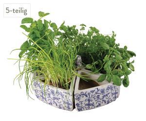 Zestaw 5 doniczek na zioła