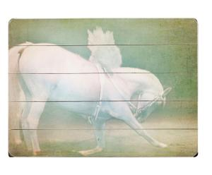 "Grafika  ""Angel Horse"""