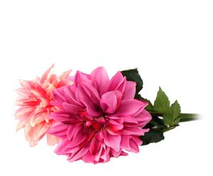 """Komplet 2 sztucznych kwiatów """"Dahlia"""""""