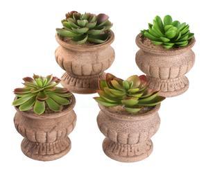 "Komplet 4 sztucznych roślin ""Cactus"""