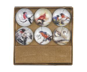 "Zestaw 6 magnesów ""Oiseaux"""