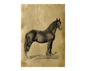 """Plakat """"Sir. Horse I"""""""
