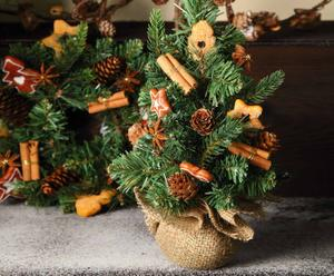 "Dekoracyjne drzewko ""Biscotti e pigne"""
