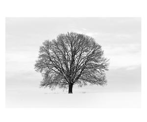 """Fototapeta """"Tree"""""""