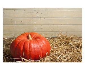 Tappetino antiscivolo in poliestere Pumpkin - 52x75 cm