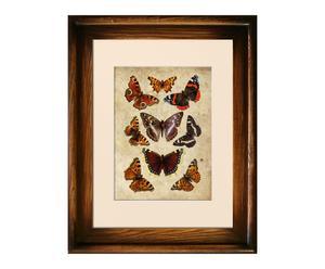 """Reprodukcia obrazu """"Motyle II"""", 47 x 37 cm"""