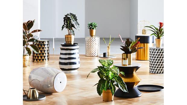 Must-have: Gardenstools