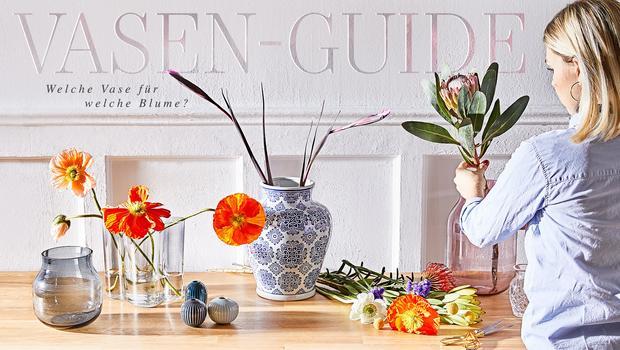 Der Vasen-Guide