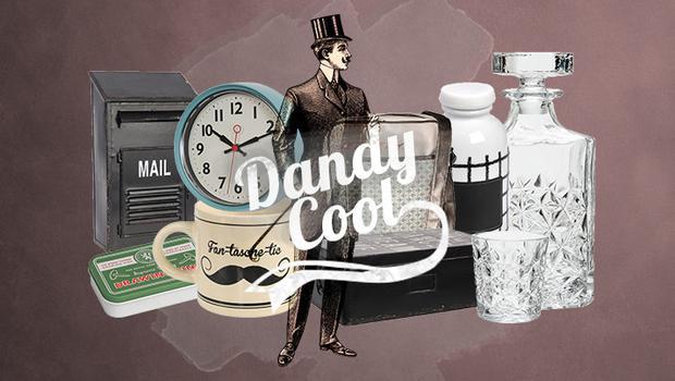 Dandy, Dandy Cool