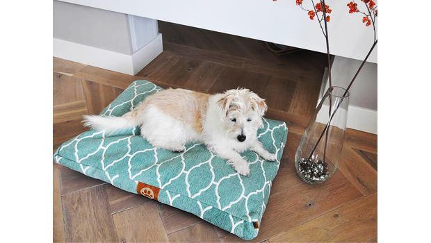 Ideální psí pelíšek
