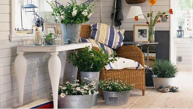 Zahrada v interiéru