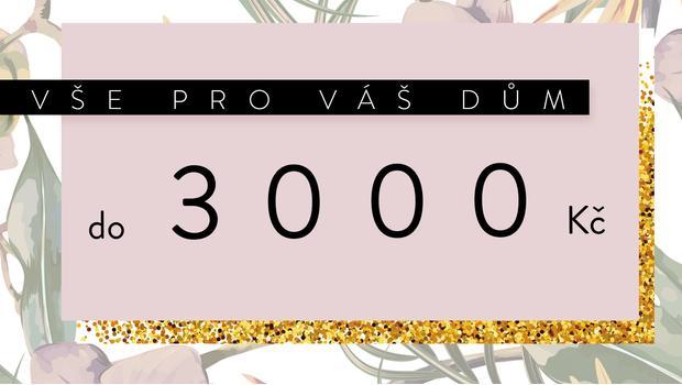 Do 3000 Kč