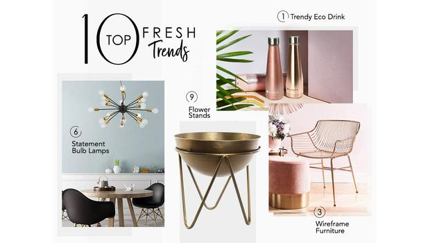10 TOP Fresh Trends