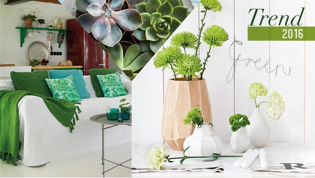 Botanický trend