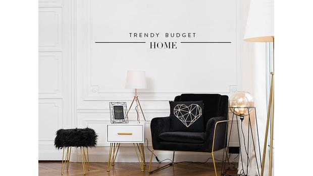Trendy budget home