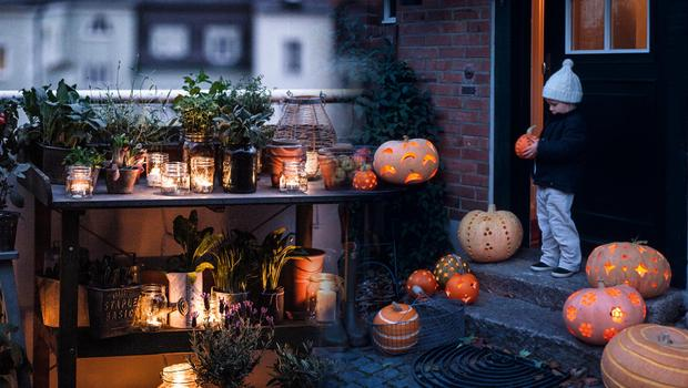 Herbstliches Outdoor-Styling