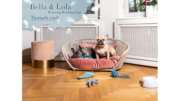 Im Körbchen mit Lola & Bella