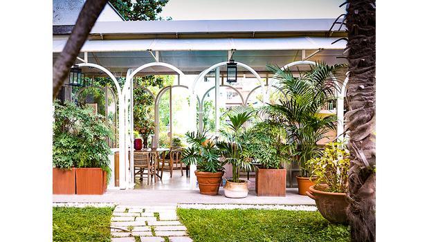 Echte Outdoor-Pflanzen