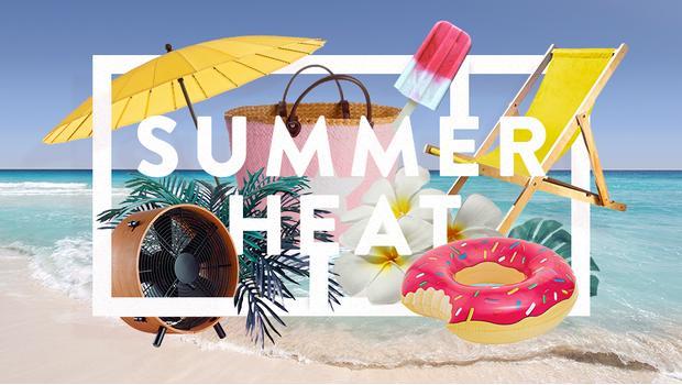 Sommer Pre Buy