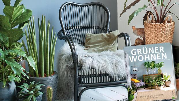 Wohntrend: Indoor Gardening