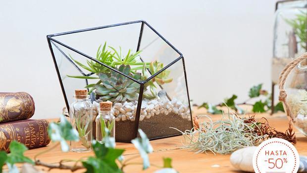 Tu jardín botánico